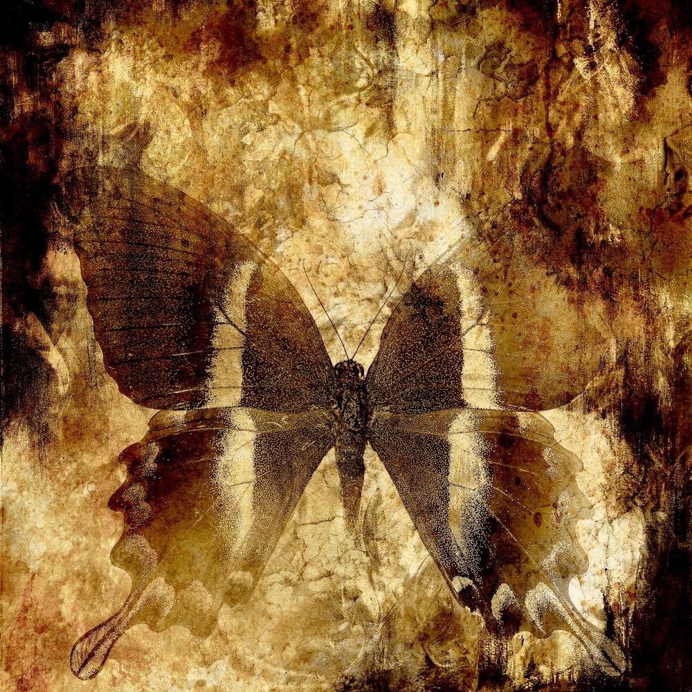 Sacred Teachings by Amyra Mah