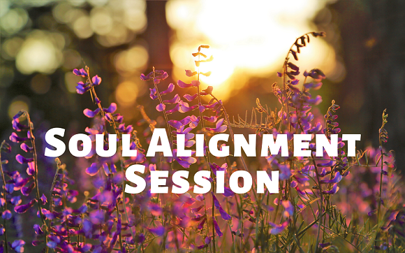 Soul Alignment Session with Amyra Mah